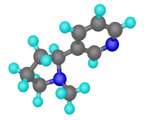 Coenzima Q10 incetineste imbatranirea si previne aparitia ridurilor
