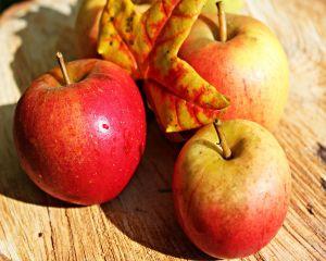 De ce trebuie sa mananci mere in fiecare zi