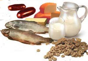 Alimente de top bogate in calciu si vitamina D