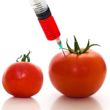 Atentie la alimente modificate genetic
