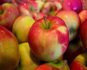 Top 4 fructe care iti revitalizeaza organismul
