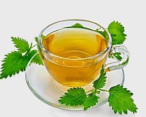 Ceaiul de urzica: beneficii incontestabile pentru organism