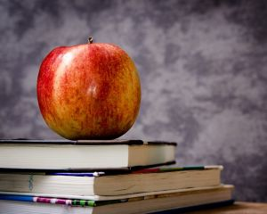 Greselile de nutritie si consecintele lor in randul elevilor