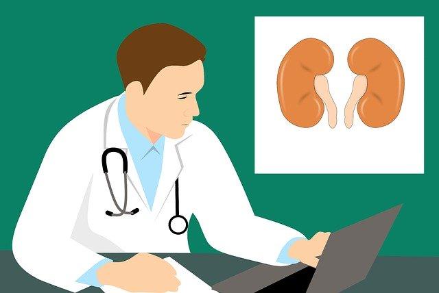 Cum sa mentii sanatatea rinichilor tai
