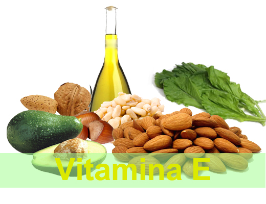 Vitamina E elixirul tineretii