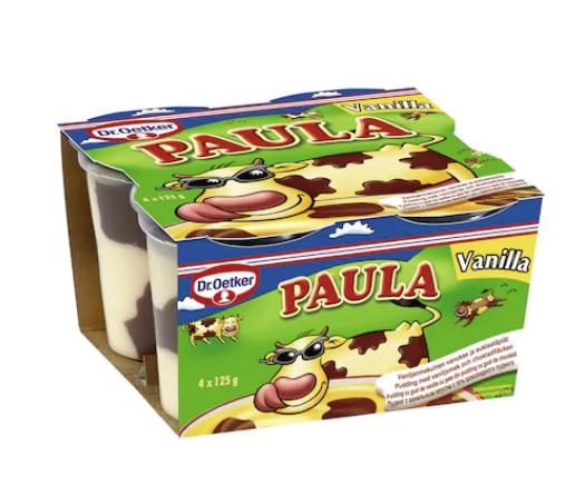 Paula - Desert budinca cu gust de vanilie si ciocolata