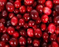 Merisoarele sau afinele rosii, excelente pentru o sanatate de fier