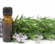Trateaza bolile respiratorii cu ulei de eucalipt!