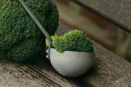 Reteta de paste cremoase cu broccoli