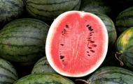 Cum alegi un pepene bine copt. Trucuri usor de aplicat