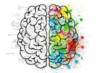 Legatura dintre alimentatie si sanatatea creierului