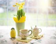 Ceaiul de cicoare - tonic hepatic si digestiv, ideal in curele de slabire