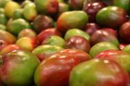 Mango - Cele mai importante beneficii pentru sanatate