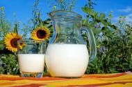 5 inlocuitori pentru laptele de soia