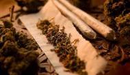 Consumul ocazional de marijuana are efecte devastatoare asupra creierului