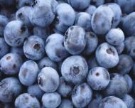 De ce este important sa consumi afine? 7 beneficii pentru sanatate