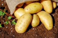 3 beneficii ale consumului de cartofi